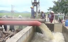 Nông dân nỗ lực cứu lúa sắp đến mùa thu hoạch