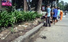 Cải tạo công viên 30-4, giữ lại bó vỉa đá xanh lâu năm
