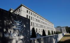 WTO mở đường cho Trung Quốc đòi Mỹ bồi thường vụ phạt thuế