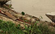 Phát hiện bom ngay chân cầu Tam Bạc, Hải Phòng