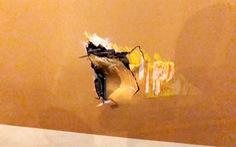Lập tổ điều tra vụ xe thang đâm lủng thân máy bay Vietnam Airlines