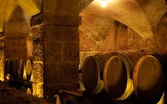 Con đường rượu vang từ Thụy Sĩ đến Pháp