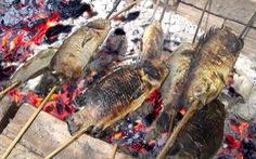 Bắt con cá rô bỏ vô rổ nhảy rồ rồ