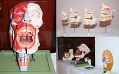 Đến Đại học Duy Tân học ngành bác sĩ răng - hàm - mặt