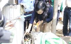 Bộ trưởng Nguyễn Thị Kim Tiến đến nhà dân hướng dẫn cách phòng tránh sốt xuất huyết