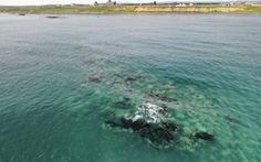Lo ngại các hòn đảo biến mất, Nhật Bản xây dựng cơ sở dữ liệu theo dõi