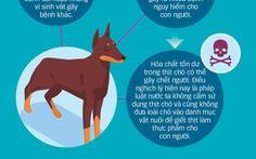 Thịt chó: Mất kiểm soát khâu giết mổ, dịch bệnh