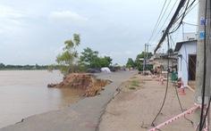 Tỉnh An Giang kè lại đoạn sạt lở quốc lộ 91 với kinh phí 160 tỉ đồng
