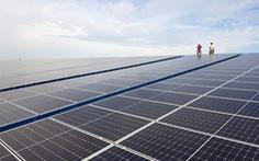 Điện mặt trời, bên sốt vó lo hạ giá, bên vẫn tiếp tục đầu tư