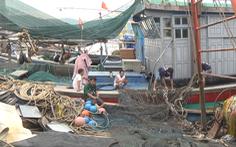 Video: Áp thấp nhiệt đới, hàng ngàn tàu cá lại tiếp tục nằm bờ