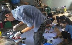 Liên minh bảo vệ chó châu Á chăm sóc đàn chó tạm giữ ở Công an Thanh Hóa