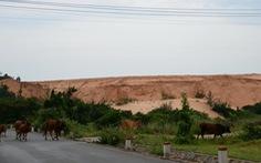 Bình Thuận: Quy hoạch titan kìm hãm kinh tế - xã hội địa phương