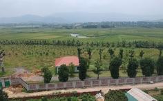 Vụ 'giao đất cho người nhà': kiểm điểm giám đốc Sở Kế hoạch - đầu tư Hà Nội