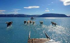Biến đổi khí hậu khiến tương lai thế giới ảm đạm