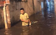 Vỡ bờ bao tại quận 8, hàng trăm hộ dân ngập chìm trong nước