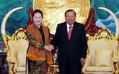 Chủ tịch Quốc hội Việt Nam hội kiến Tổng bí thư, Chủ tịch nước Lào