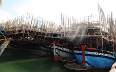 Tàu câu mực với 44 ngư dân bị chìm trên biển Trường Sa, 3 người mất tích