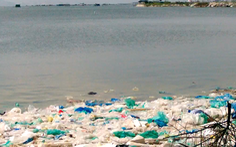 Video: Kinh hoàng rác thải nhựa trên vịnh Cam Ranh