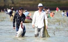 Thủy điện Trị An ngưng xả tràn, ngàn người tranh nhau bắt cá dưới chân đập
