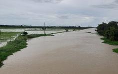 Mực nước đầu nguồn sông Cửu Long tiếp tục tăng do mưa bão