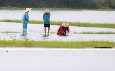 Thả lưới, 2 người dân bị nước lũ cuốn chết