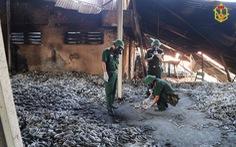 Đề nghị báo cáo việc khắc phục hậu quả vụ cháy Công ty Rạng Đông