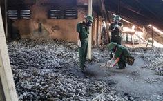 Công ty Rạng Đông gian dối về sự cố thủy ngân phát tán ra môi trường