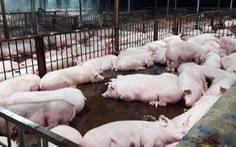 Chuyển biến về vệ sinh an toàn thực phẩm: Mừng nhưng chưa hết lo