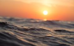 Các đại dương nóng chưa từng có trong năm 2019