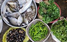 Chợ quê ở Sài Gòn - Kỳ 2: Tôm cá Tam Giang ở Sài Gòn