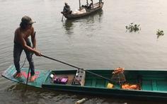 Cá chép đưa ông Táo vừa thả xuống sông đã bị chích điện 'bất tỉnh'