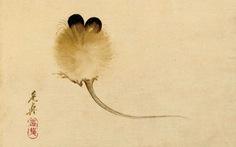 Chuột: Minh họa cho huyền thoại, lòng tin và cả ảo tưởng của chúng ta