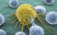 Kỳ tích y học: Truyền hệ miễn dịch của anh cho em trai để cứu em