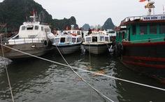 Tàu cao tốc Vân Đồn - Cô Tô tăng giá vé gần tết, nghi bắt tay làm giá