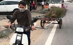 Trộm cây cảnh trên quốc lộ bán lấy tiền tiêu tết