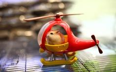 Trước Tết Canh Tý, thú cưng chuột hamster 'cháy hàng'