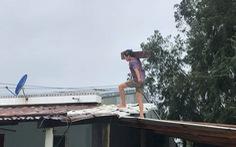 3 tàu cá của tỉnh Quảng Ngãi gặp nạn trên biển