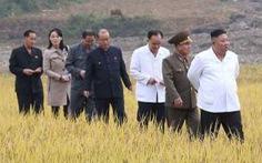 Em gái ông Kim Jong Un tái xuất hiện sau 2 tháng, thị sát vùng lũ cùng anh