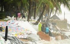 Hàng ngàn dân, quân Hội An đổ ra bờ biển chất bao cát giữ nhà cửa, resort