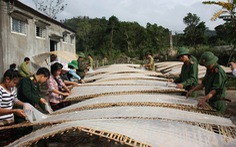 Đoàn kinh tế - quốc phòng 337: Dựng ngày mới giữa núi rừng Trường Sơn