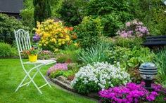 Vườn trong nhà phố - mảnh ghép cho một tổ ấm trọn vẹn