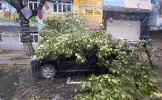 Chùm ảnh bão số 9 và hoàn lưu bão quần thảo ở Đà Nẵng