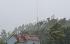 Bão sắp vô Quảng Ngãi: Cổng chào bằng thép, cây xanh đã ngã đổ
