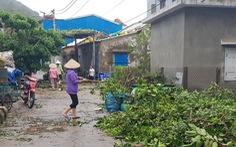 Đảo Cù Lao Chàm như bị xé vụn sau bão số 9