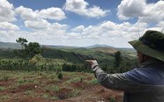 Điều tra lại vụ '6 cựu chiến binh tham gia phá rừng' kêu oan