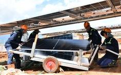 Chuẩn bị thí điểm mua điện mặt trời giá thấp