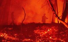 1,6 triệu hecta rừng bị thiêu rụi ở California, gấp đôi kỷ lục năm 2018