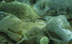 'Hơn 14 triệu tấn nhựa nhỏ xíu đang nằm dưới đáy đại dương'