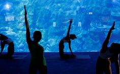 Lớp học yoga giữa 'lòng đại dương'