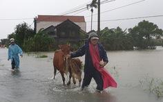 Phú Yên: Lũ dâng nhanh ở nhiều nơi sau bão